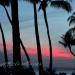 Wordless Wednesday on Maui!