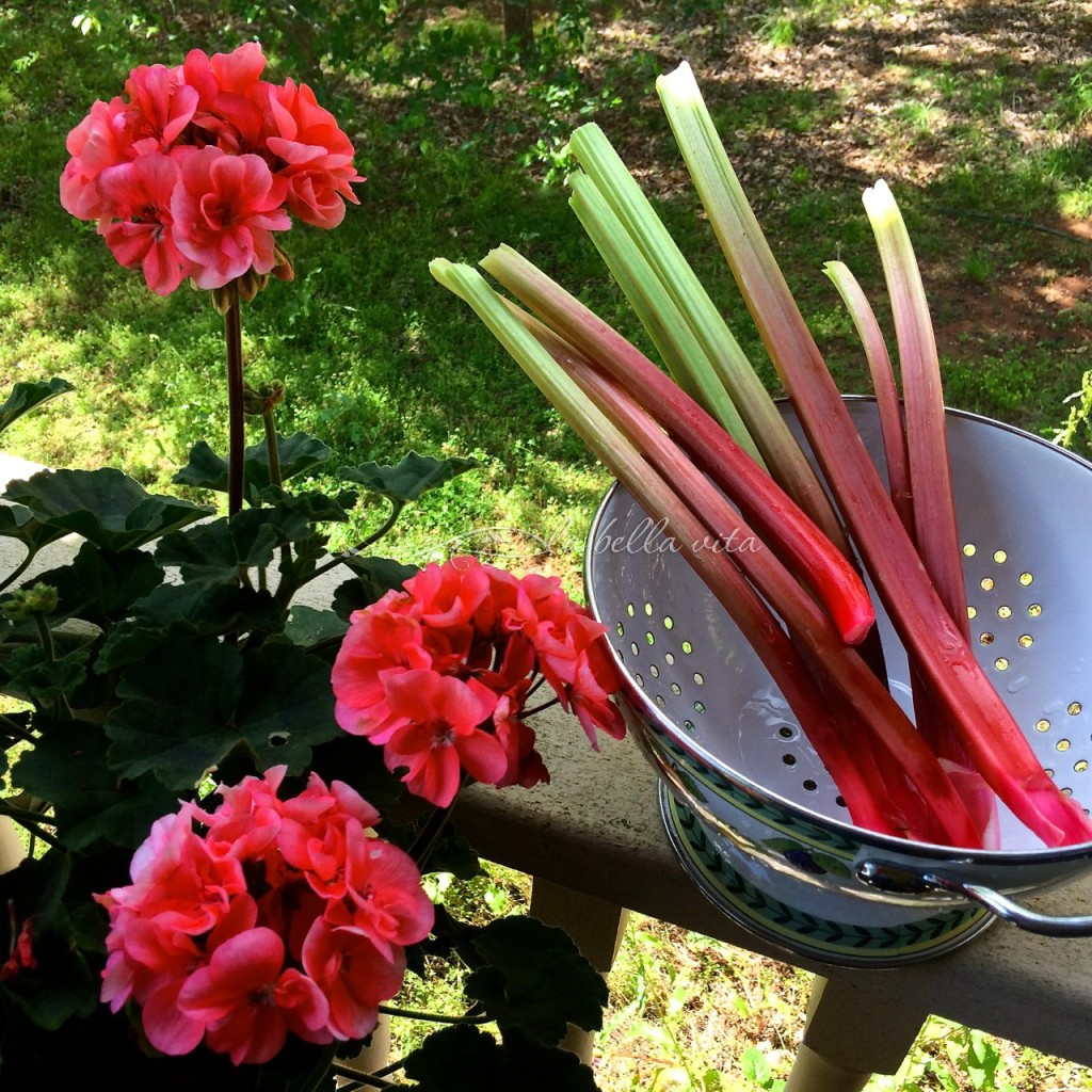 rhubarb streusel cake with mascarpone icing