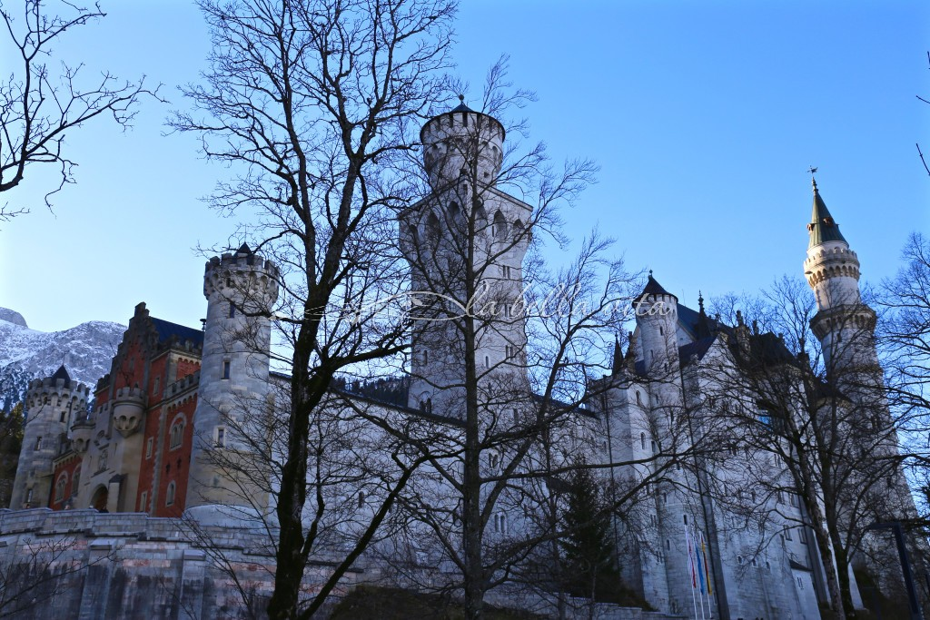 bare trees are one of the added benefits to visiting the castle in wintertime