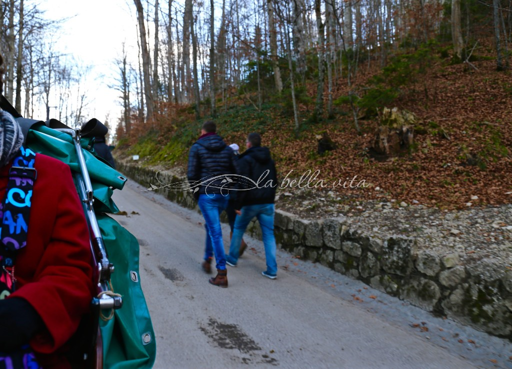 from our horse-drawn carriage, tourists also choose to hike up the steep mountainside to the castle